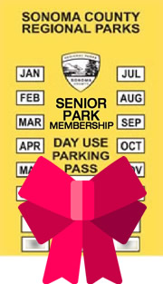 Senior Gift Membership Voucher (for 62 years +)